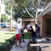 Caroline Street Project - Landscaping